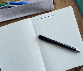 bullet dnevnik manonija